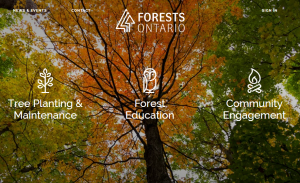 Forests Ontario banner